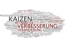 Kaizen Change Management