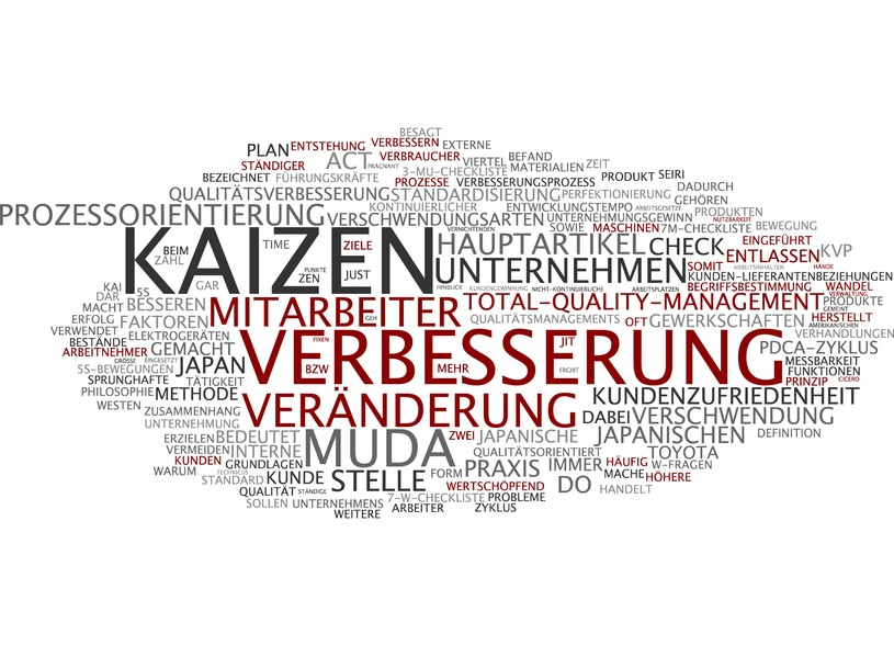 Kata Coaching und Kaizen Change Management