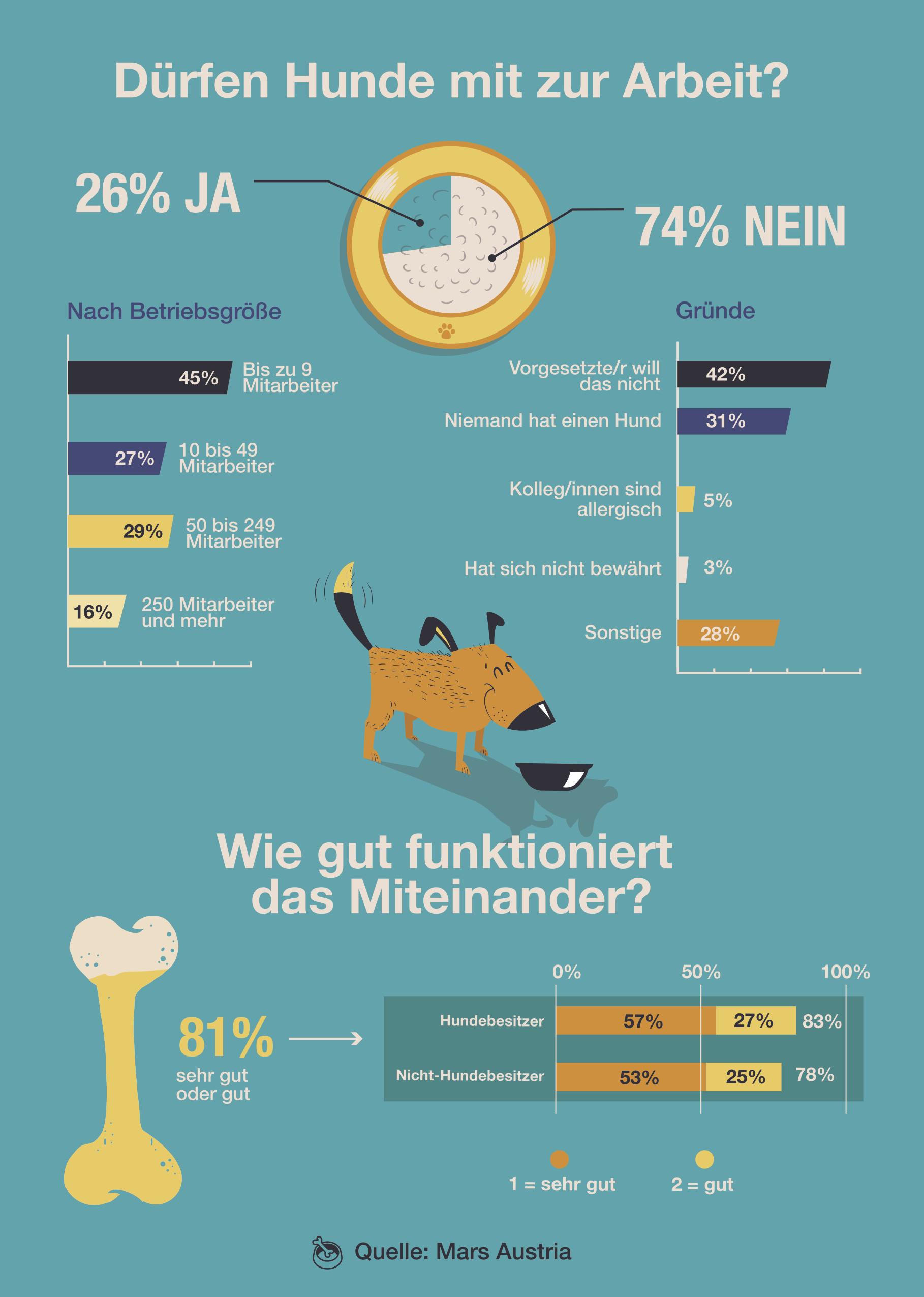 Infografik Hunde am Arbeitsplatz